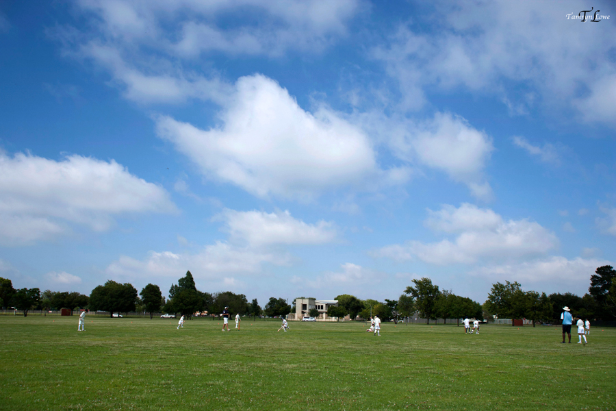 Kiddies Cricket