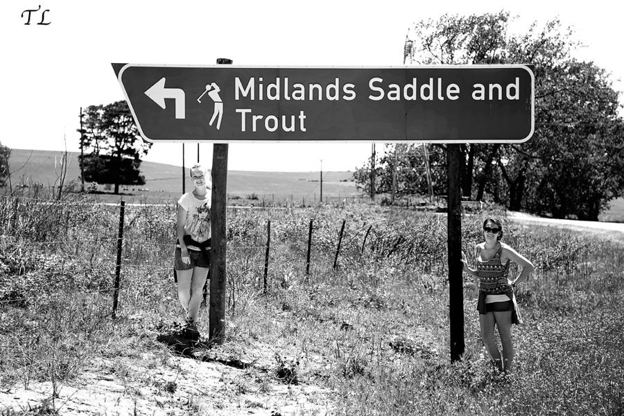 Saddle & Trout
