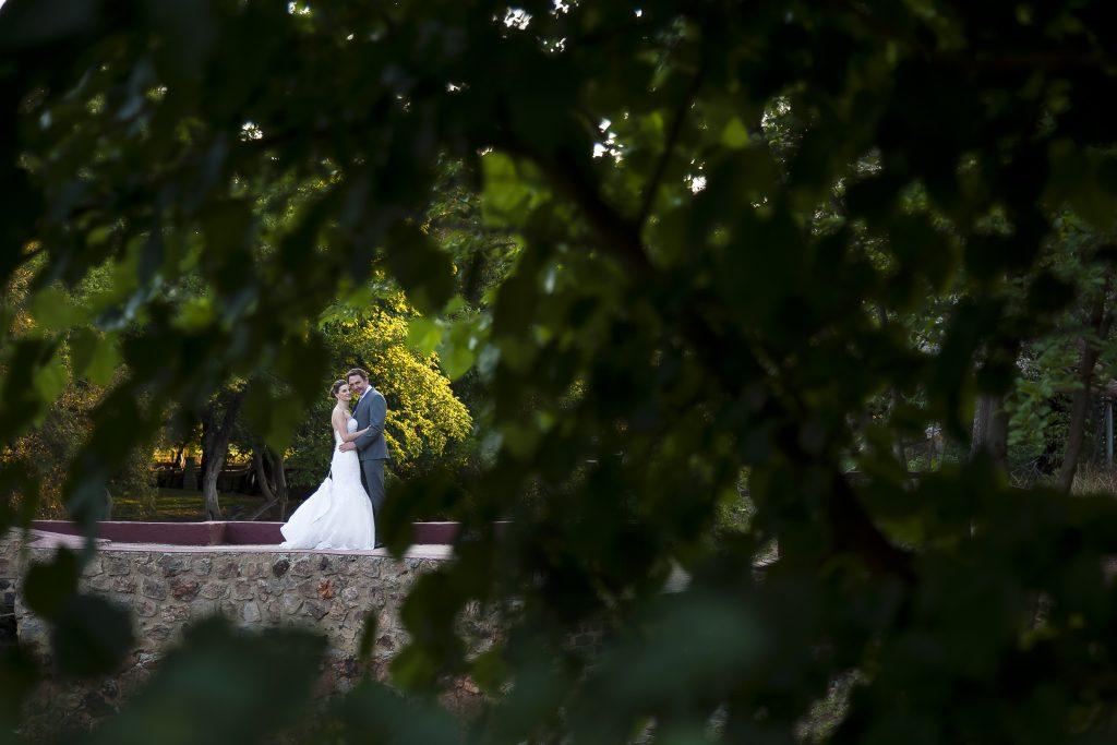 Wedding Portrait through Trees
